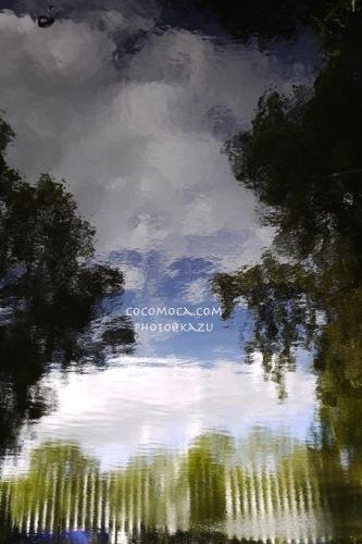 20120911_1.jpg