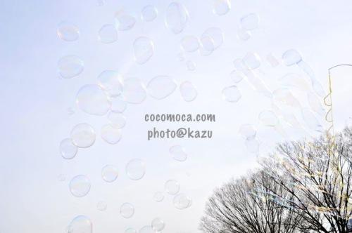 20130103_7.jpg