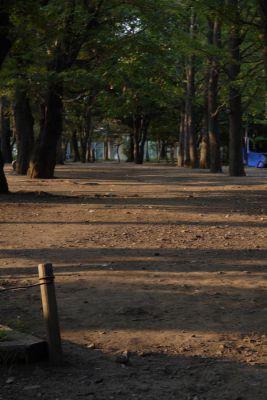 20100715_7.jpg