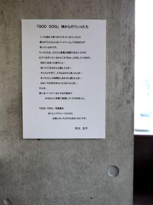 20110220_4.jpg