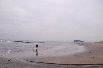20110615_6.jpg