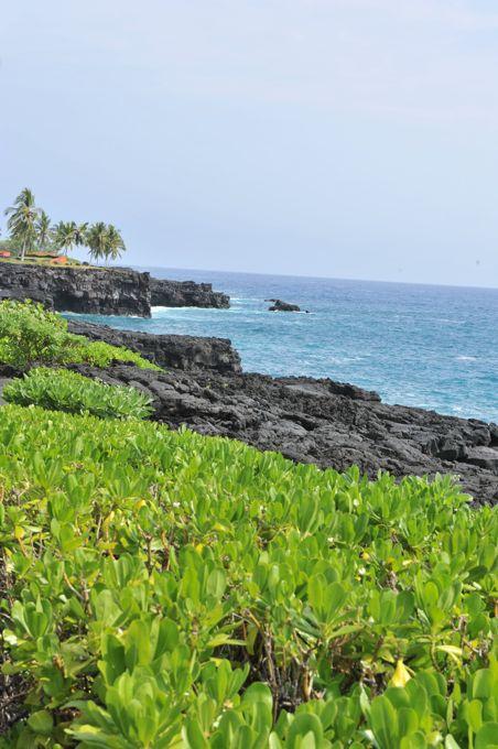 hawaii_011